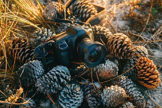 Photocamera vintage deitado no maountain de pinhas na luz do sol da manhã na natureza. afligido velho riscou a câmara digital empoeirada usada com agulhas e grama.