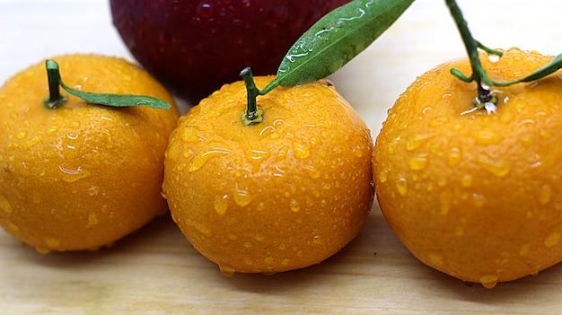 Photoshoot laranja agradável e fresco