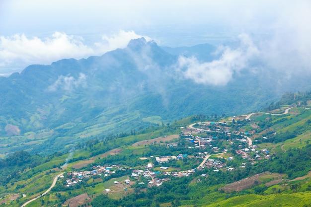 Phu tub berk montanha com névoa, tailândia