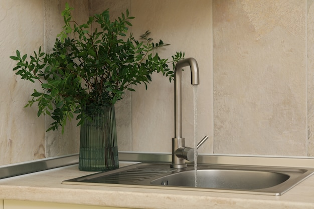 Pia de cozinha com torneira e vaso com planta