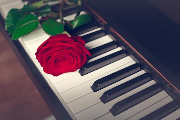 Piano de cauda com rosa vermelha