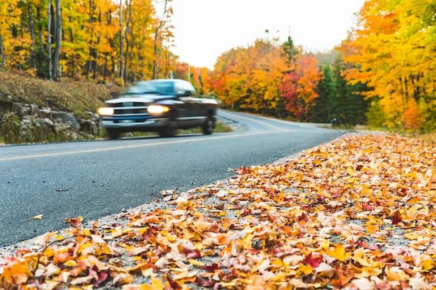 Pickup na estrada rural com cores de outono e árvores