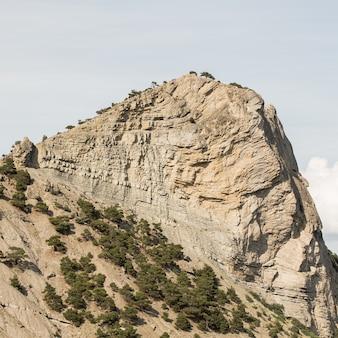 Pico de uma montanha e grama