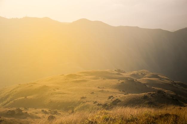 Pico montanha, de, mulayit, colina, em, myanmar, país, com, dourado, capim