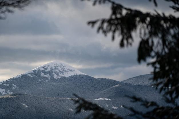 Pico nevado da montanha coberta pela floresta no inverno nublado. conceito de viagens e férias.