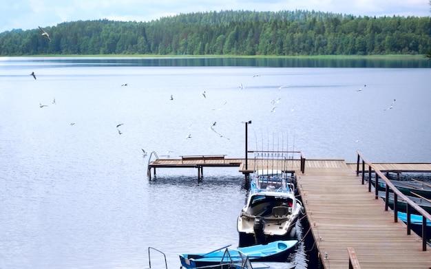 Píer com barcos em um belo lago com costa arborizada e pássaros circulando sobre o lago