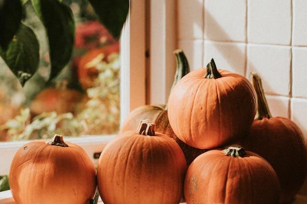 Pilha de abóbora de halloween perto do fundo