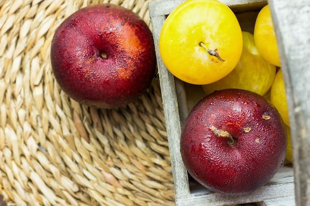 Pilha de ameixas vermelhas amarelas maduras suculentas orgânicas em caixa de jardim de madeira no rattan