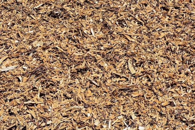 Pilha de aparas de madeira