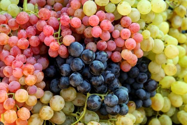 Pilha de cachos de uvas de mesa frescas tricolores no mercado
