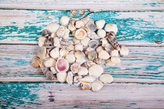 Pilha de conchas derramada sobre uma mesa de madeira azul. vista do topo