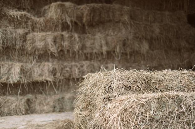 Pilha de feno de palha de arroz na fazenda