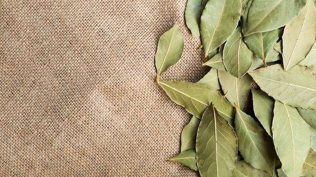 Pilha de folhas secas de louro
