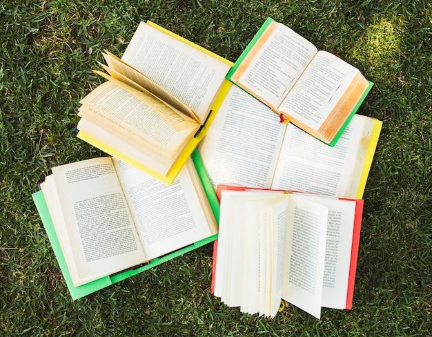 Pilha de livros na grama