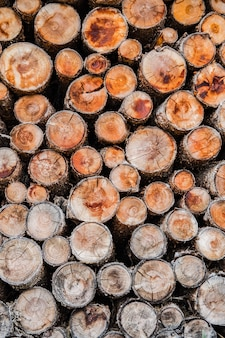 Pilha de madeira cortada, formando o plano de fundo