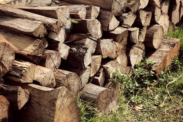 Pilha de madeira na grama
