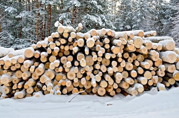 Pilha de madeira no inverno em um fundo de árvores, neve, céu