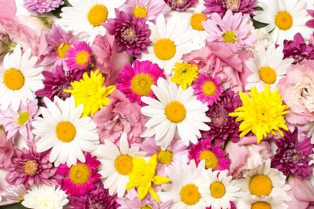 Pilha de maravilhosas flores brilhantes