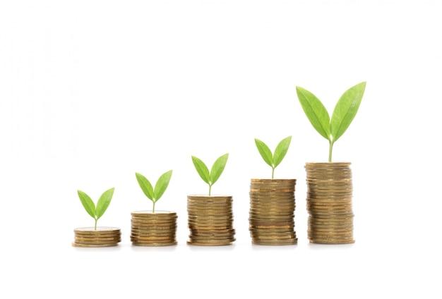Pilha de moedas de dinheiro crescendo gráfico sobre fundo branco