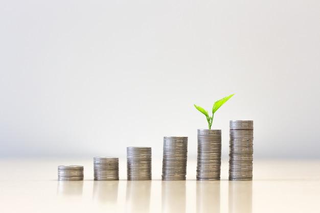 Pilha de moedas e planta salvando o conceito de dinheiro