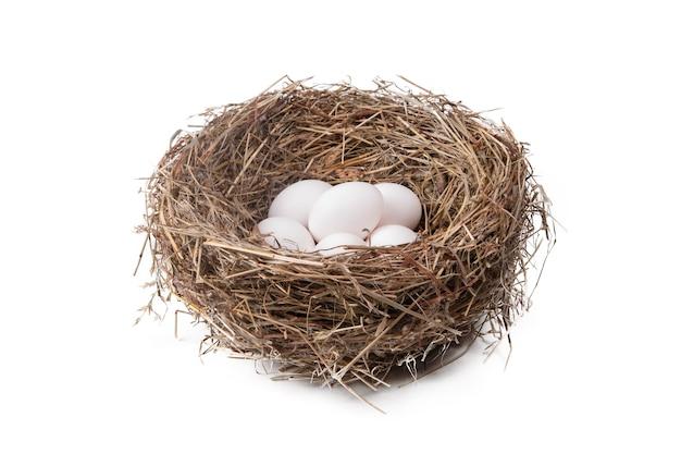 Pilha de ovos brancos em um ninho de palha em um fundo branco