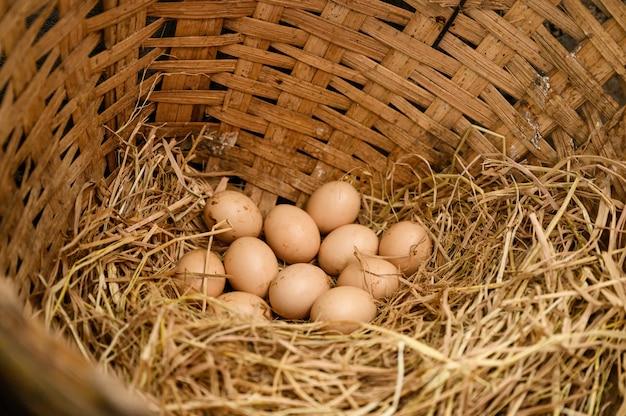 Pilha de ovos em palha na cesta de madeira