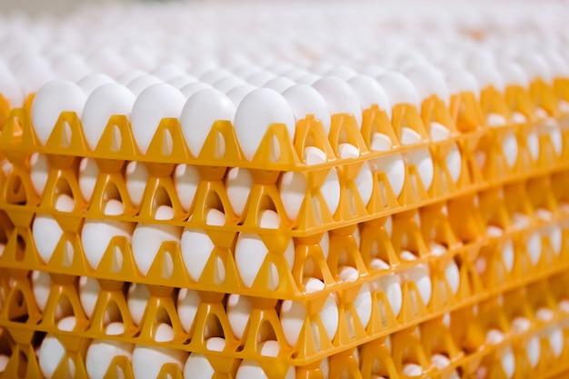 Pilha de ovos na bandeja na loja