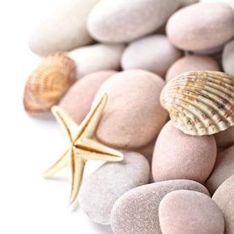 Pilha de pedras, conchas e estrela do mar