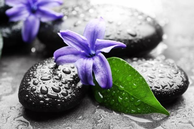 Pilha de pedras quentes do spa e flores na superfície cinza
