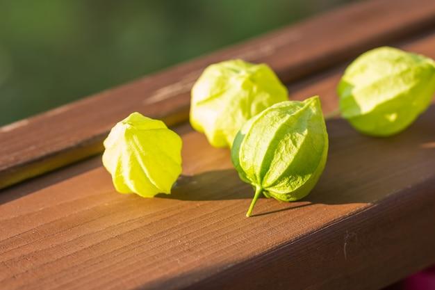 Pilha de physalis isolada na placa de madeira, cereja de inverno verde, não madura physalis. elementos de decoração para bolos. copie o espaço