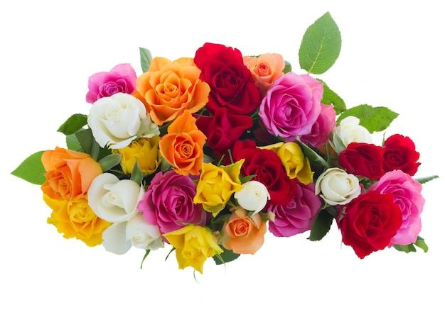 Pilha de rosas frescas cor de rosa, amarelas, laranja, vermelhas e brancas isoladas no branco