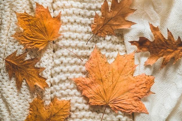 Pilha de roupas de malha com folhas de outono, conceito outono-inverno.