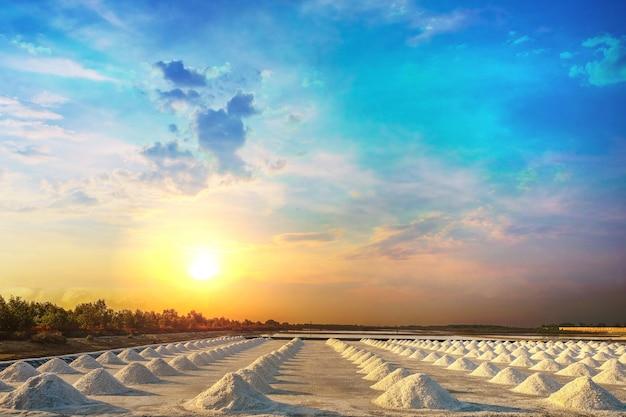 Pilha de sal na bandeja de sal nas áreas rurais da tailândia ao nascer do sol