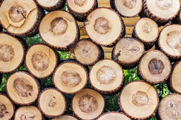 Pilha de textura de log de toco de madeira cortada. pode ser usado como plano de fundo