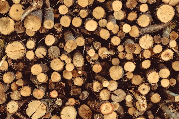 Pilha de toras de madeira ásperas cortadas redondas.