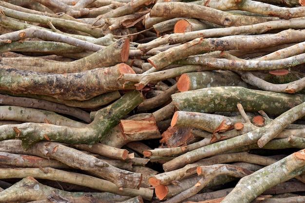 Pilha de toras de madeira serrada para servir como lenha