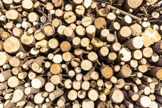 Pilha de toras serradas. fundo de decoração de madeira natural.