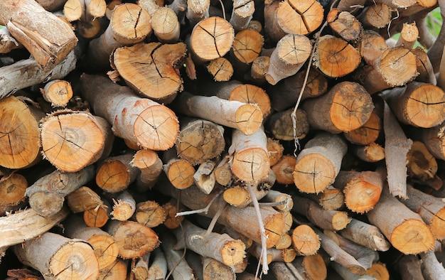 Pilha de tronco de madeira cortada
