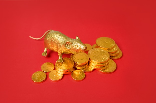 Pilha do zodíaco e das moedas de ouro do rato do ouro com fundo vermelho, feliz ano novo chinês.