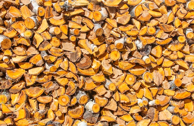 Pilha picada e empilhada da madeira do pinho e de vidoeiro.