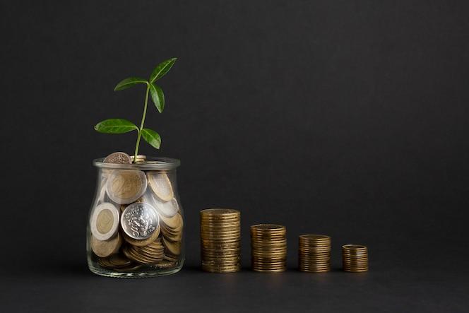 Pilhas de moedas perto de pote de moedas com planta