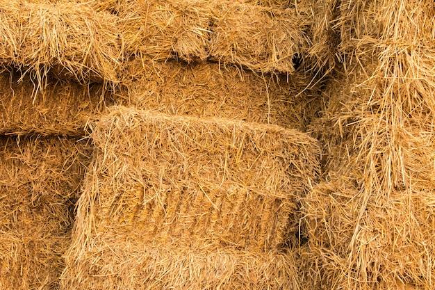 Pilhas de palha, detalhe de palha empilhada para alimentação animal
