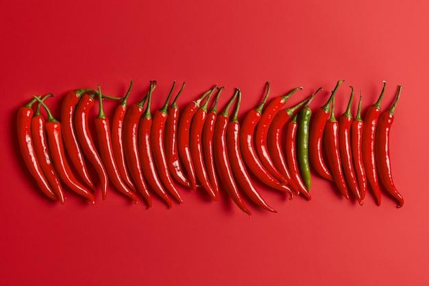 Pimenta malagueta picante vermelha disposta verticalmente sobre um fundo vívido. legumes frescos colhidos no mercado ou no jardim. banner de design com espaço de cópia. visão plana leiga. conceito de alimentação e nutrição.