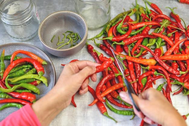 Pimenta. preparação para enlatar vagens multicoloridas de pimenta amarga. cortar as pontas verdes com uma tesoura.
