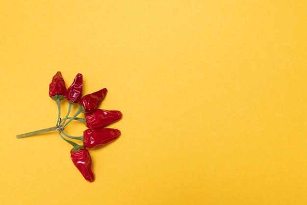 Pimenta vermelha e quente para design, comida criativa. amarelo