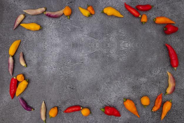 Pimentas peruanas de várias cores em fundo cinza