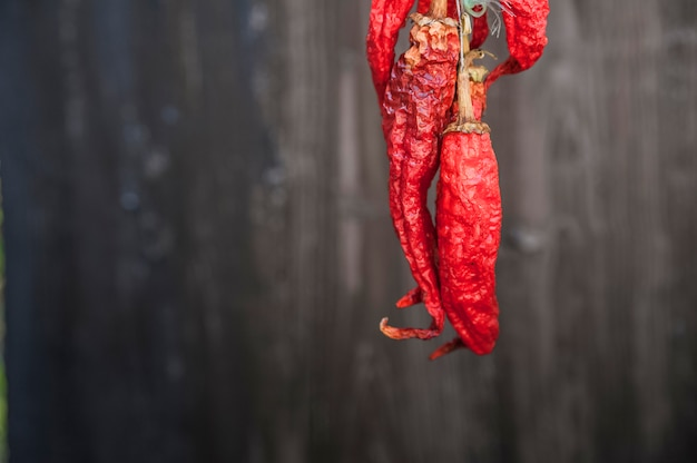 Pimentas secas e maduras em um close-up de fundo escuro. chili peppers e copie o espaço. cinco de maio