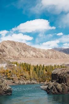 Pin árvore e rio e céu azul com a montanha no outono em leh ladakh, índia