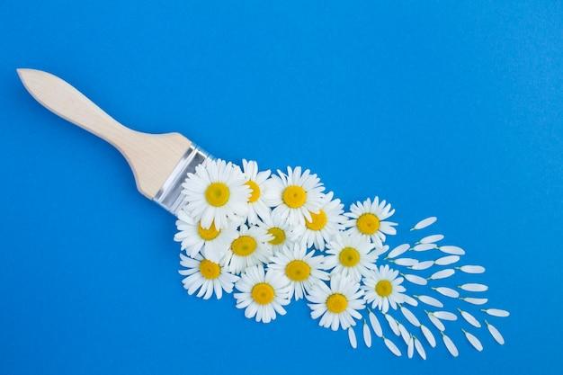 Pincel com chamomiles na mesa azul. vista do topo. copie o espaço. conceito de flores de verão.