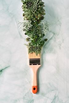 Pincel com tinta à base de plantas suculentas sempervivum.